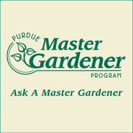 Ask a Master Gardener at Earth Day