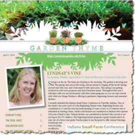 Garden Thyme Vol. 2, Issue 4
