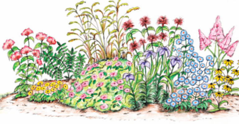 Rain Gardens – Advanced Master Gardener Training